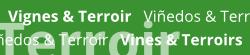 Lien vers la catégorie Vignes & Terroir