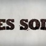 la-journee-mondiale-des-sols